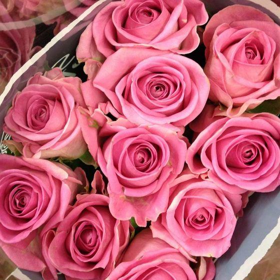 Pink Akva (Pink Aqua ®)